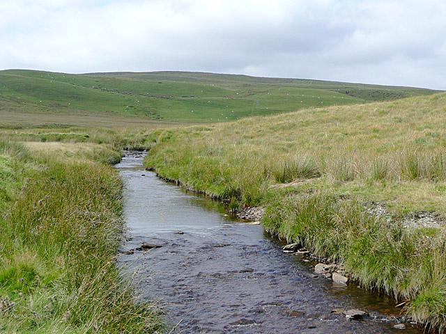 Afon Camddwr south of Nantymaen, Ceredigion