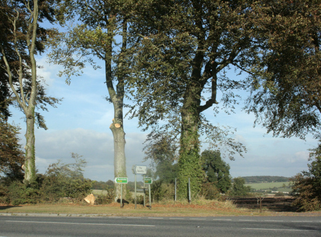 2009 : Recent tree pruning on the A350