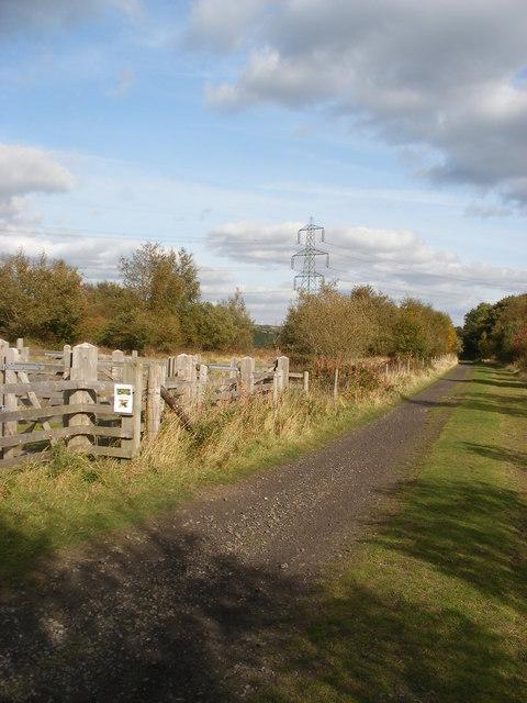 Trans Pennine Trail near Soughley