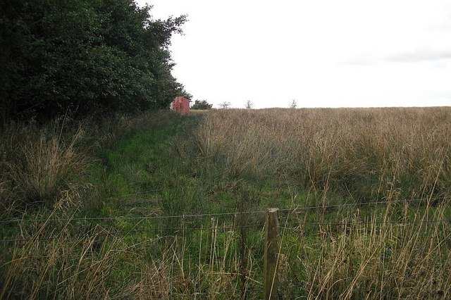 Wet field, Blackrig