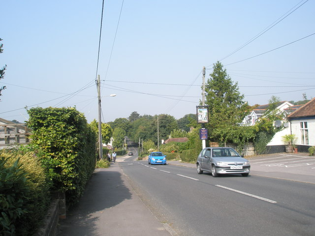 Early autumn in Church Road