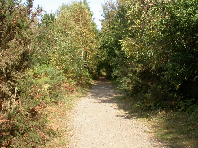 Upton Heath, railway trackbed