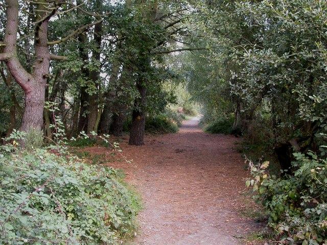 Upton Heath, bridleway