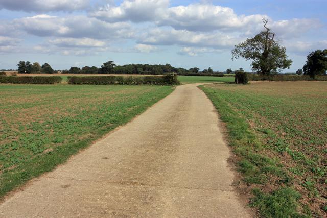 Towards Scorborough