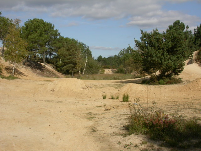 Upton Heath, old sandpit