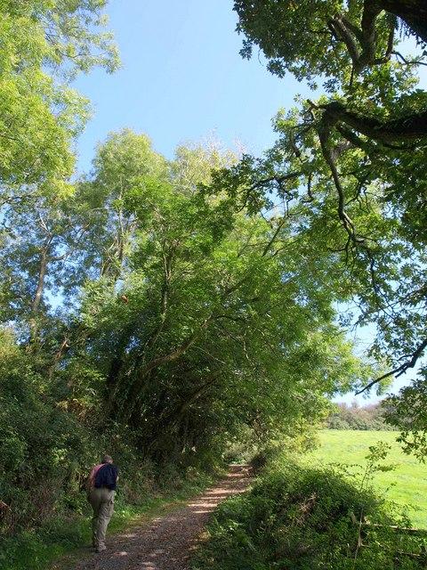 Steep bridleway to Hole