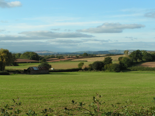 Fields near Hill Barton Farm