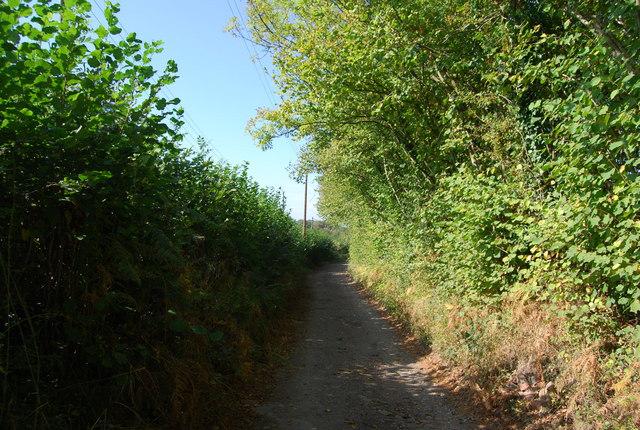 Track to Smockham Farm