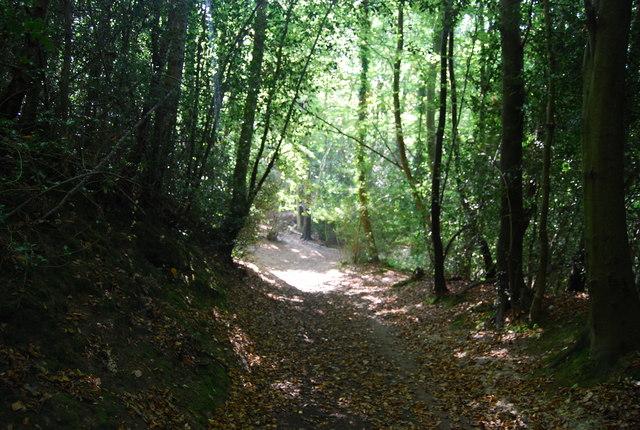 Footpath west of Smockham Farm