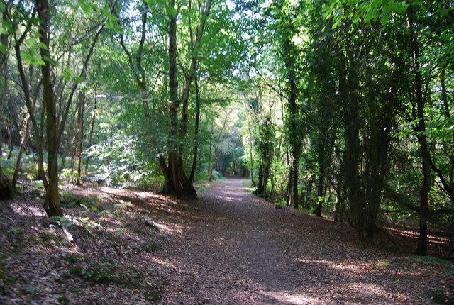 Footpath through Hurst Wood