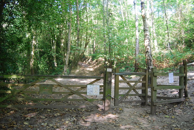 Gate into Hurst Wood