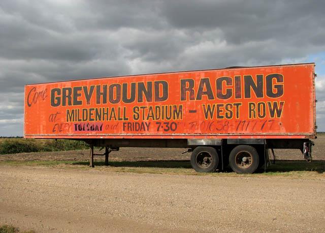 Come Greyhound Racing