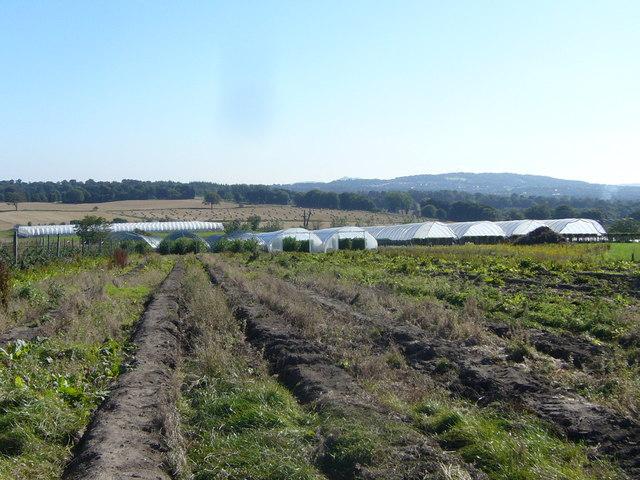 West Craigie Farm view