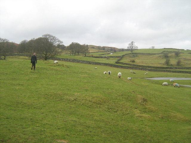 Farmland near Winder Hill