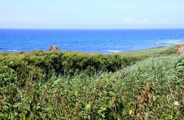 Coastal view near Widemouth Bay