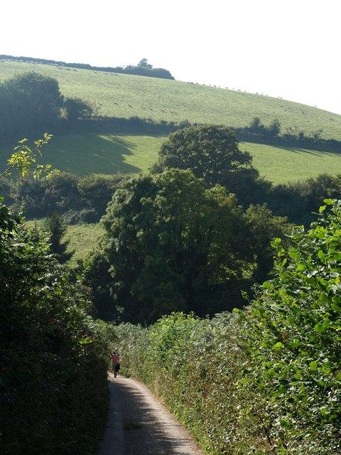 Lane near Kingston