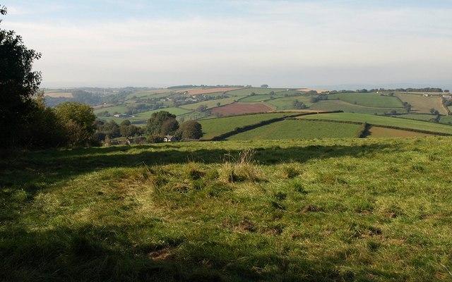 Field near Cornworthy