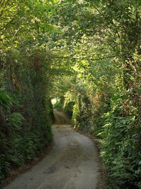 Lane to Cornworthy