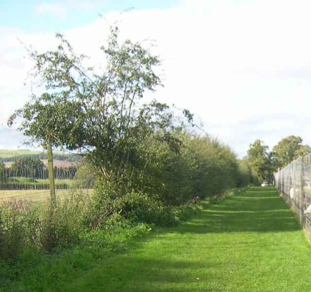 Grassy footpath at the Scottish Deer Centre
