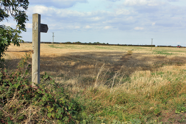 Bridleway to Watton