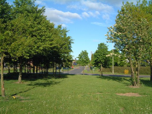 Traffic Island between Sandy Way and Mercian Way (4)