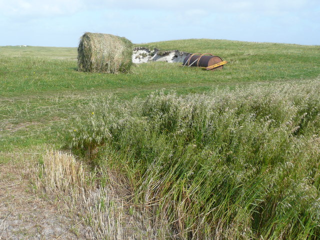 Oat harvest on the machair at Solas