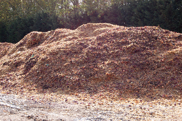 Onion skins and detritus composting