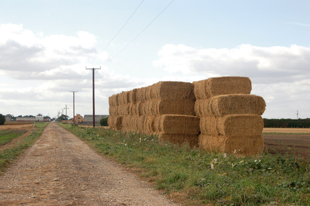 Bales beside the track at Harris Farm
