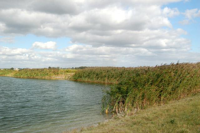 Irrigation reservoir on Harris Farm (2)