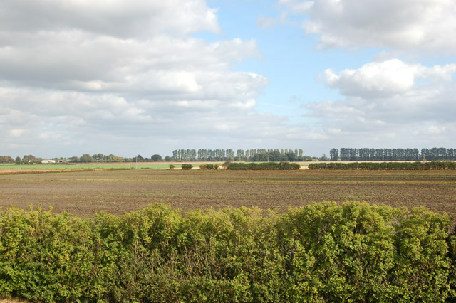 A view east across the fen from Harris Farm