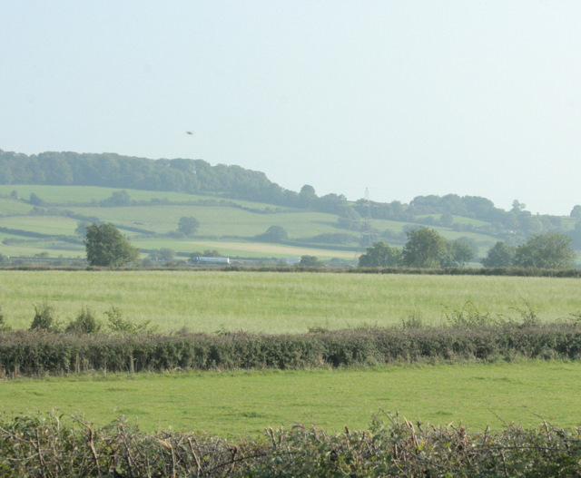 2009 : Pasture land east of Codrington