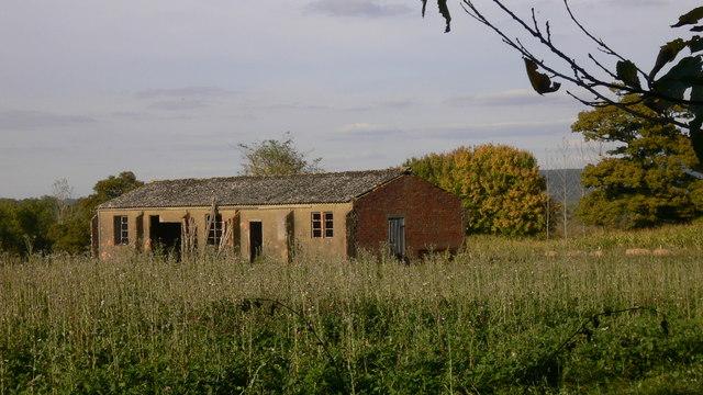 Ramshackle outbuilding in field