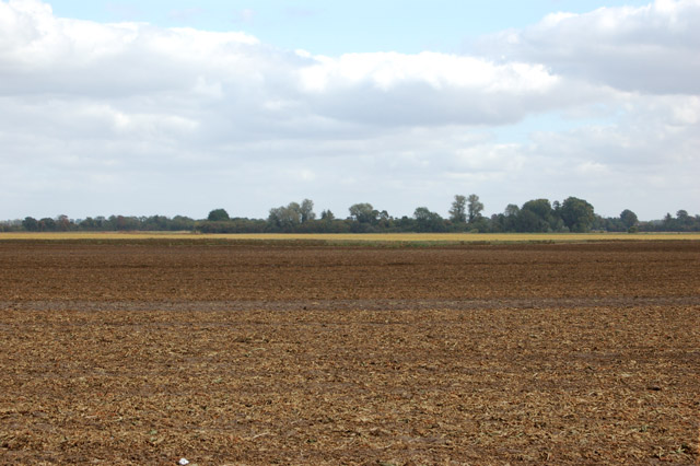 Wide fenland landscape on Poplar Farm (2)