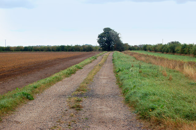 Track southeast of Poplar Farm