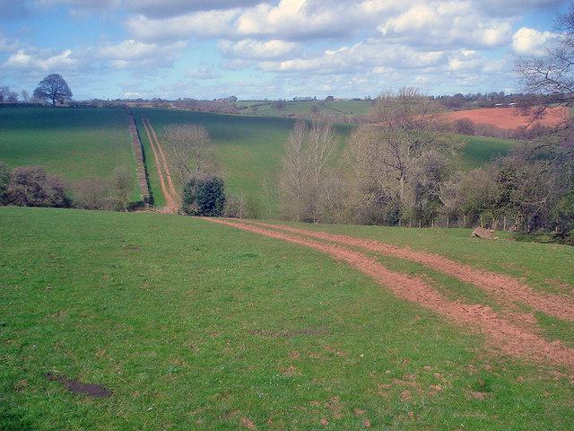 Farm track near Grendon Court