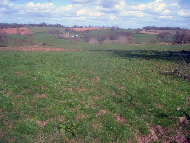 Grazing land at Grendon Court