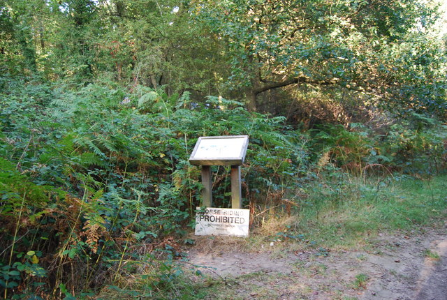 Information board & sign, Rusthall Common