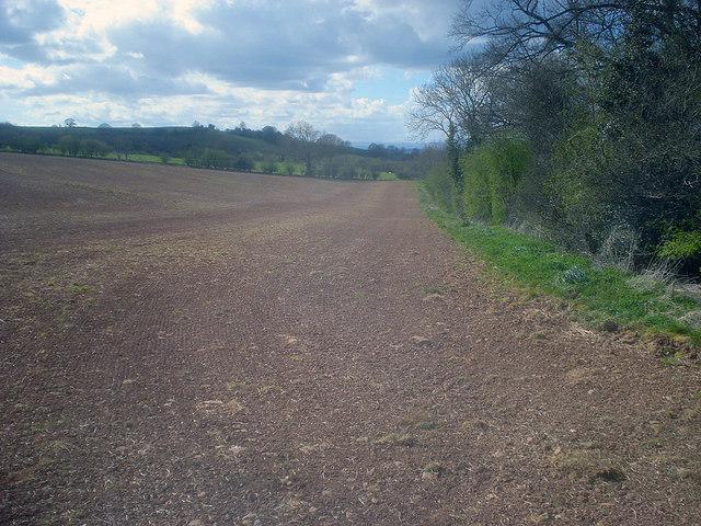 Arable land near Hegdon Hill