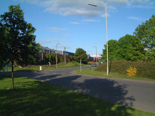 Traffic Island between Sandy Way and Mercian Way (6)