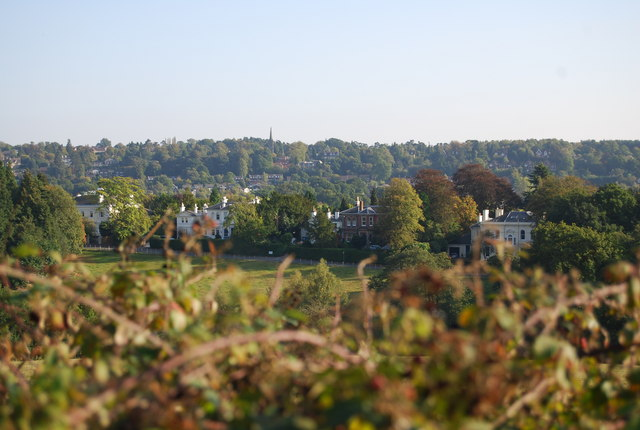 Houses on Hungershall Park seen from Nevill Park