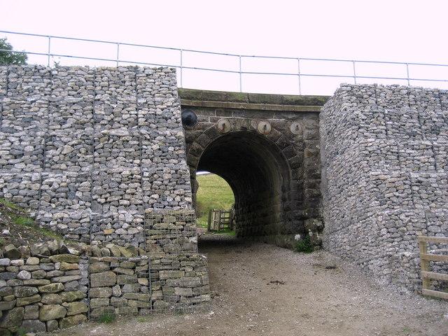 A Buttressed Bridge