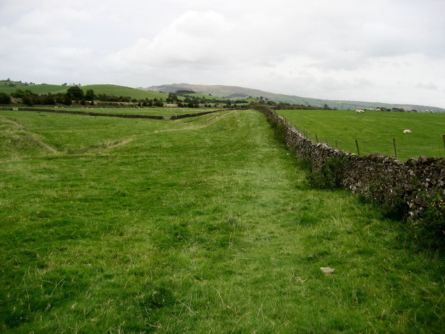 Pasture on Copy Hill