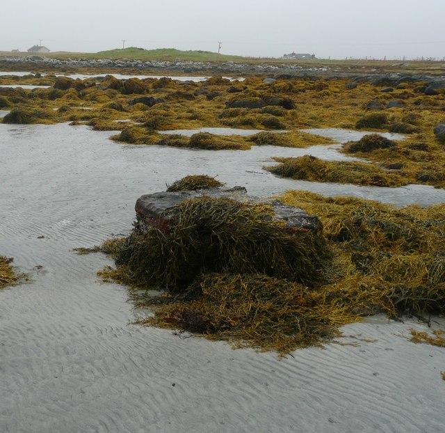 Beach near Cladach Chirceboist