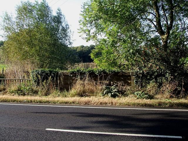 Overgrown bridge, Greenfield Road
