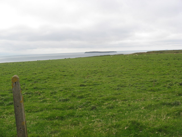 The Hookses grazing land between the Pembrokeshire coastal path and Dale airfield