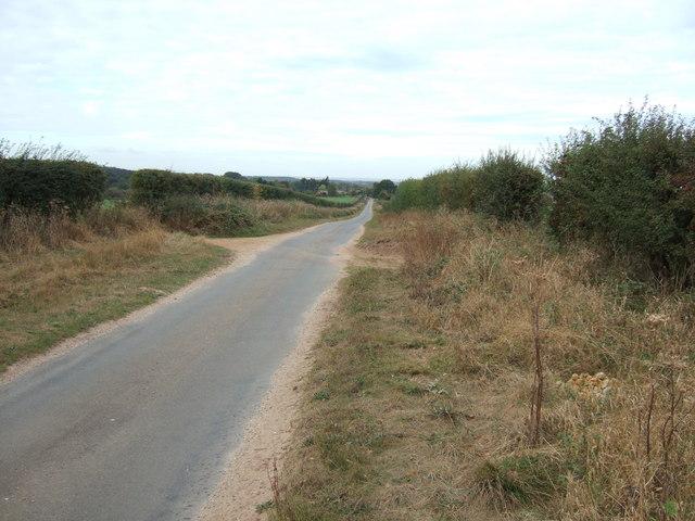Ling House Road towards Dersingham