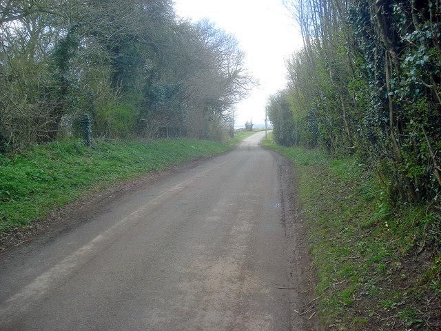 Lane at Hegdon Hill - 2