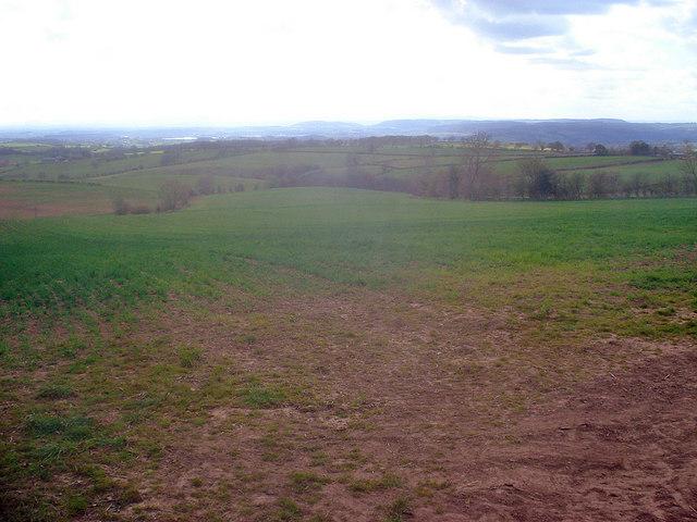 Farmland west of Hegdon Hill