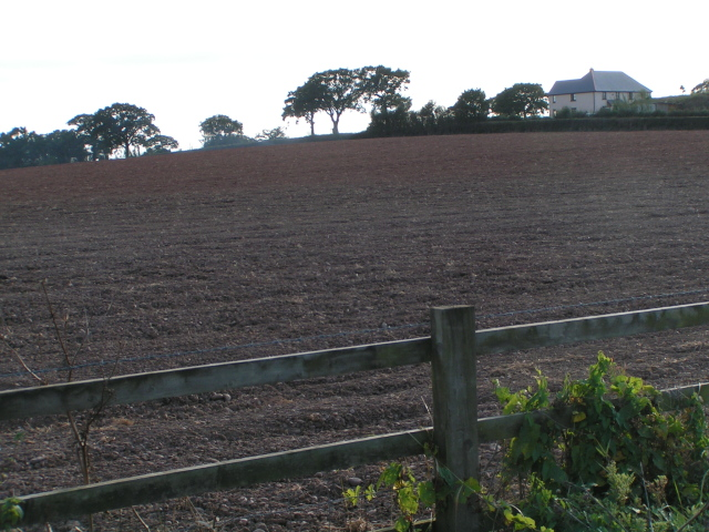 Field next to the B3184 near the A30, looking south-west toward Spain Farm