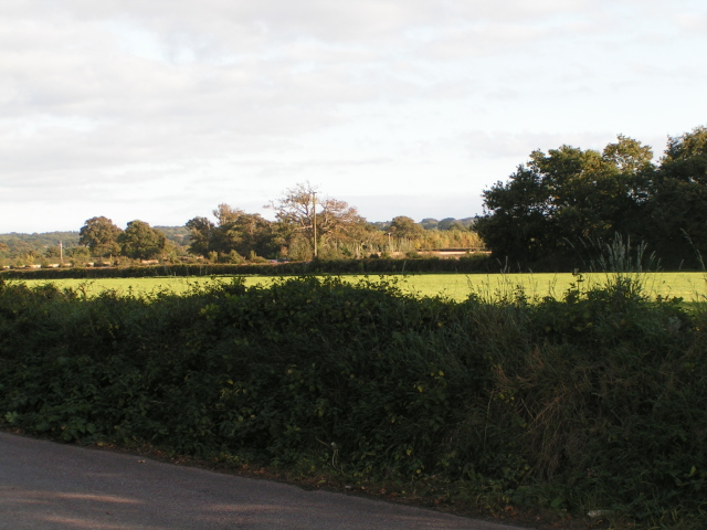 Field next to the A30 (it is on the far side of the field, over the hedge)
